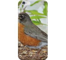 Robin Among The Flowers iPhone Case/Skin