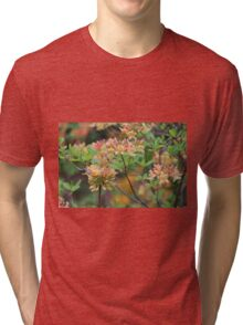 Growing In The Woods Tri-blend T-Shirt