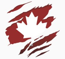 Canada Red Leaf by northsidelife