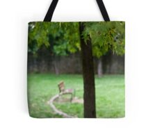 In The Park Tote Bag