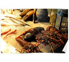 SKIATHOS - Lobsters display at a Restaurant entance Poster