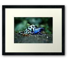 Nature Lovers Framed Print