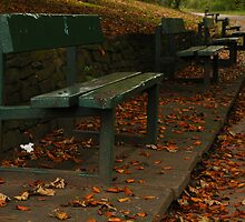 Green Benches by Andrew Cryer