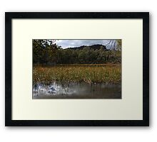 Afternoon at Dunn's Swamp Framed Print
