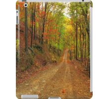 Rainbow Lane iPad Case/Skin