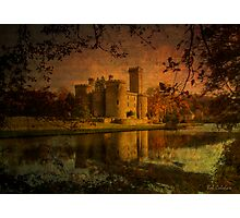 Textured Chateau, Haute Vienne, France Photographic Print
