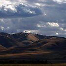 Rolling Hills by Jan  Tribe