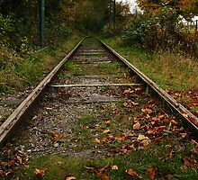 Autum Rails by Andrew Cryer