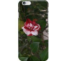 A beautiful flower iPhone Case/Skin