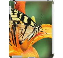 Tiger Swallowtail Butterfly On Daylily iPad Case/Skin