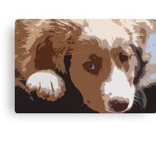 Cute puppy gazing at the photographer Canvas Print