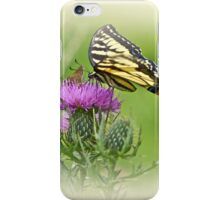 Oh What A Beautiful Day iPhone Case/Skin