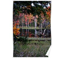 A Pond of Color - Autumn Series  Poster