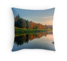 River Dee Throw Pillow