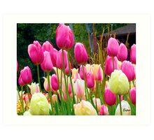 Lindos Tulipanes Art Print