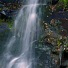 Bastion Falls, Catskills, NY by Jeannette Sheehy