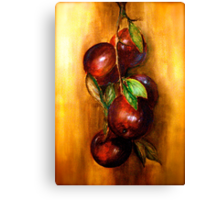 Apples....A Still Life.. Canvas Print