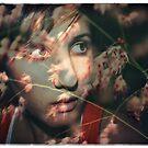 Pink Confetti by Fiona Christensen