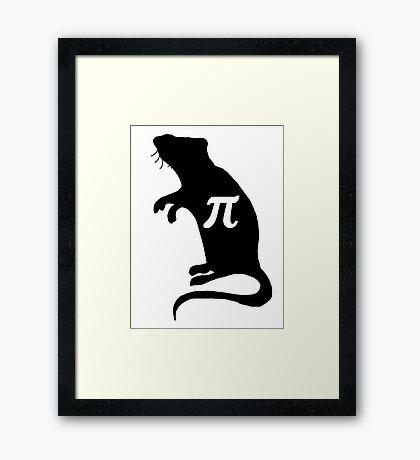 Pi Rat Framed Print