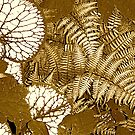 Sepia Ferns by H A Waring Johnson