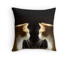 Reflections Of Sassy Throw Pillow