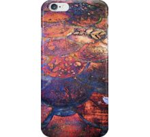 Colourful Paving at Woodbridge Reserve iPhone Case/Skin