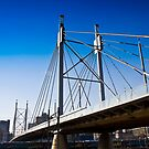 Nelson Mandela Bridge  Suspension Bridge &amp; Walkway by RatManDude