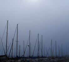 Long Beach Marina  by Tom-Sky