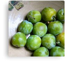 Greengages - The Pick of the Crop Canvas Print