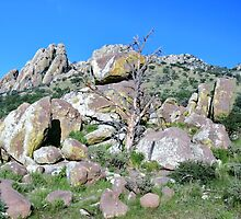Davis Mountains in Texas by Susan Russell
