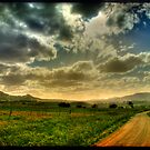 Quirindi Plains by Mark Moskvitch