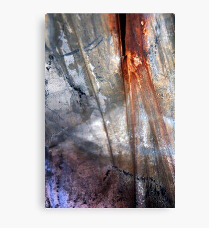 Shine Down Canvas Print