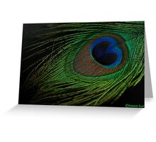 A PEACOCK FEATHER Greeting Card