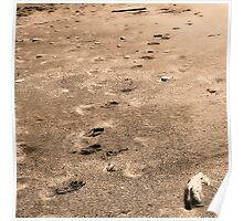 Pawprints in the Sand Poster
