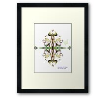 I'm here. Can't you see me? Framed Print