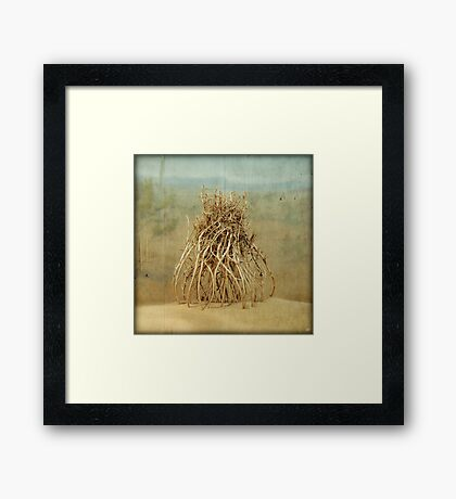 The Anatomy of a Parallel Universe Framed Print