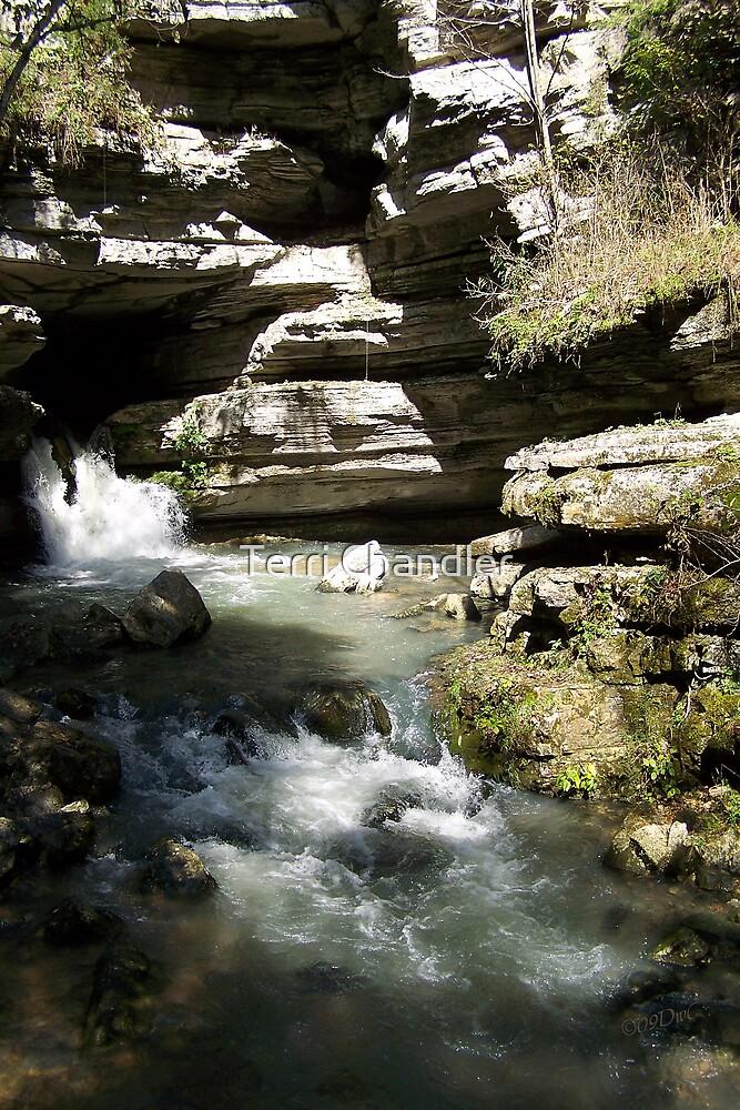 Blanchard Springs the Waterfall by Terri Chandler