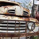 Arizona - FORD truck  by Candy Gemmill