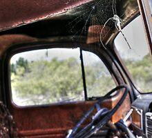 "Arizona - ""Web""  by Candy Gemmill"