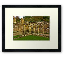 Cloisters Framed Print
