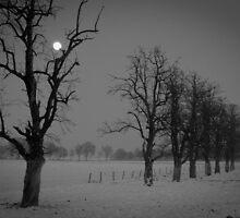 creepy landscape by janko