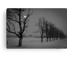 creepy landscape Canvas Print