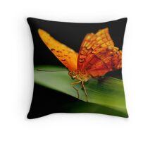Cruiser Butterfly II Throw Pillow