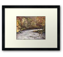 Fall Whitetail Deer Framed Print