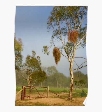 Pioneer Park ~ No 1 Poster