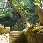welcome to paradise 73..pena park sintra portugal.. by Almeida Coval