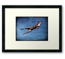 Flying Boxer Framed Print