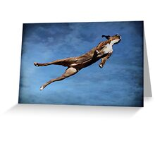 Flying Boxer Greeting Card
