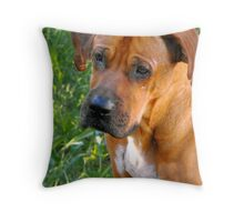 Confused or Bemused? Throw Pillow