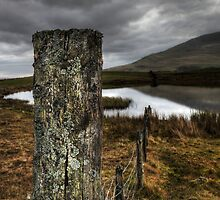 Tewit Tarn #2 by David Robinson